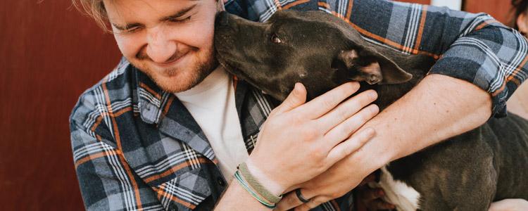 狗狗把幼崽送给主人 是信任的表现吗?