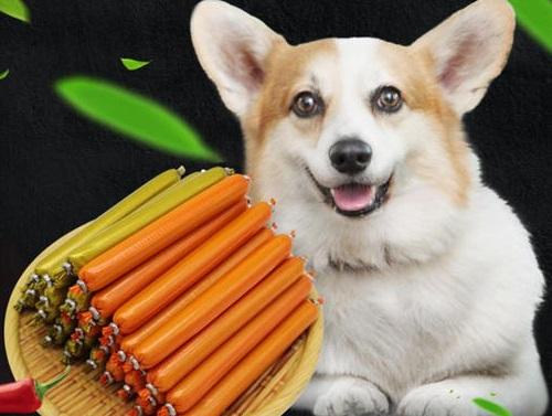 狗狗吃了火腿肠的包装袋怎么办