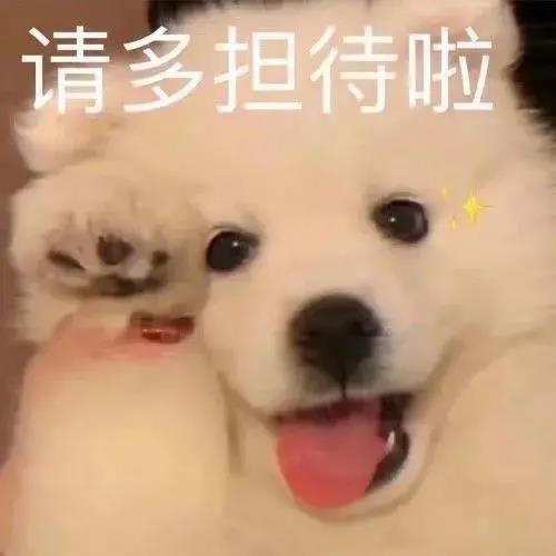 狗界王思聪:我喝的不是酒,是想你的液